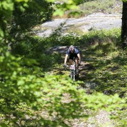 Trek Archives - Bike Cottage Country